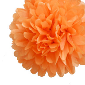 Pom Poms Orange